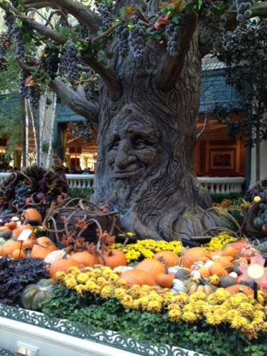 The talking tree in the fall display at Bellagio's Conservatory