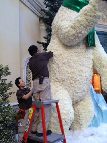 A bit precarious, if you ask me, but necessary to maintain that awesome white polar bear appearance1
