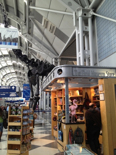 Look behind to see the towering dinosaur skeleton behind the Field Museum Store.