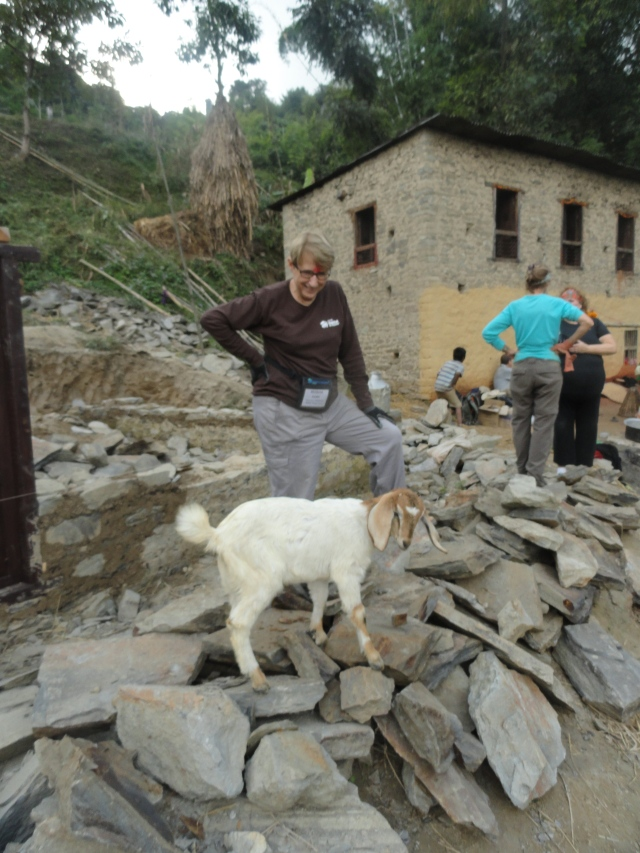 Here I am with the red tika that had been placed on my forehead standing amidst a pile of rocks near a mud house talking to a goat! Ah, connections!