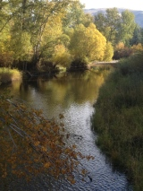 Beautiful autumn view of the Loop Trail at Travelers Rest, Lolo, MT