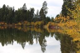 Serene, placid waters