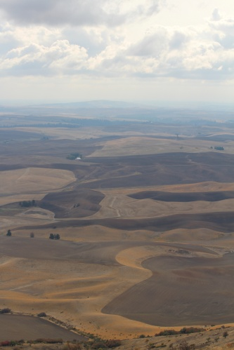 View from Steptoe Butte, Washington