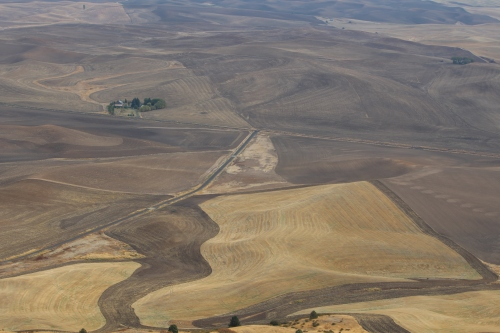 Rippled landscape of The Palouse