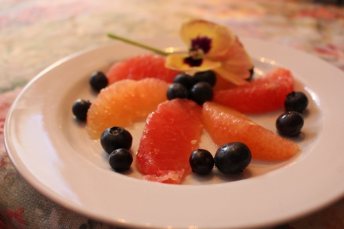 First course:  fresh grapefruit slices and blueberries