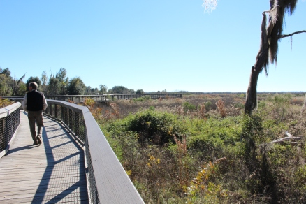 Boardwalks lead you through the prairie