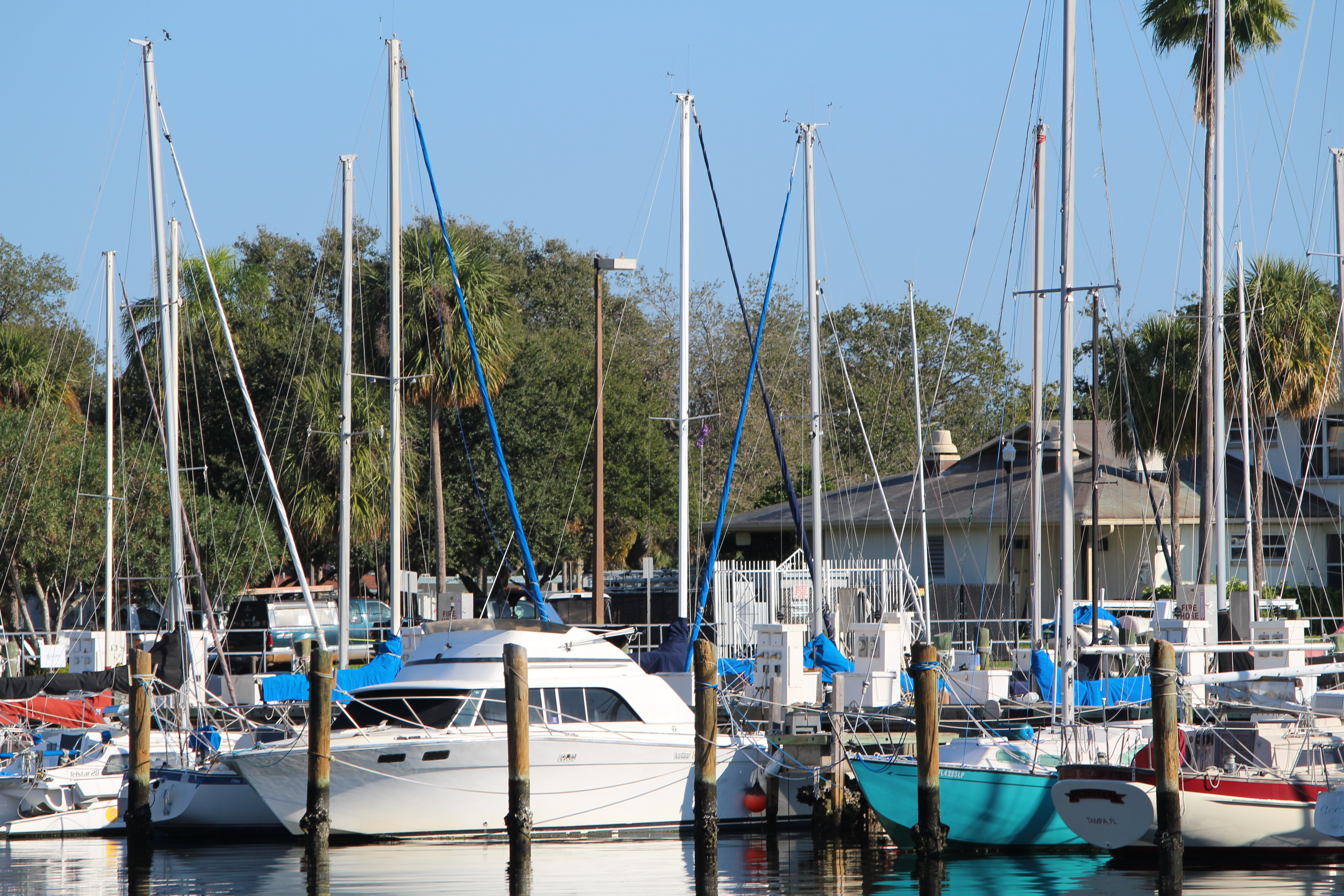 Five Things To Do In A Day St Petersburg Florida Oh