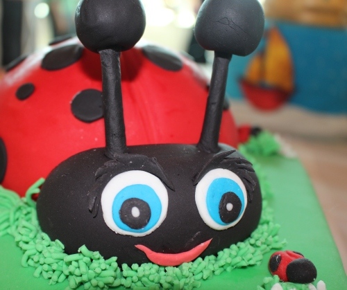 Detail from Skyla Shealy's cake Ladybug which took 2nd Place in All-Occasion Fondant, Junior Division