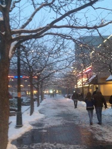 Snowy day in Boise