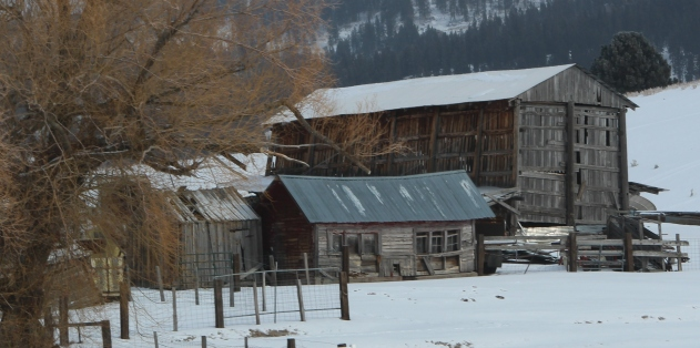 Abandoned barn, Idaho 55
