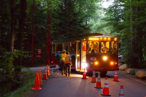 Shuttle bus to Elkmont firefly viewing
