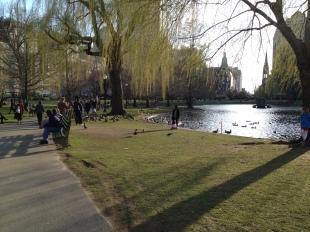 Boston Public Gardens