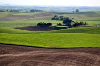 A house positioned on the Palouse among fertile and newly planted fields