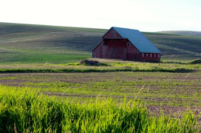 Palouse landscape with barn