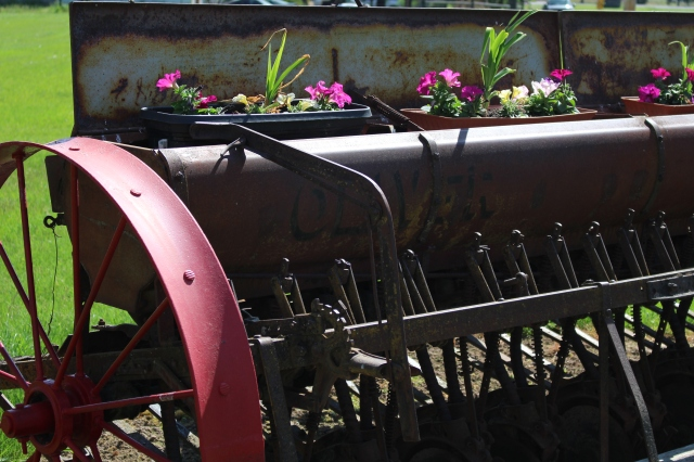 Farm implement with flowers