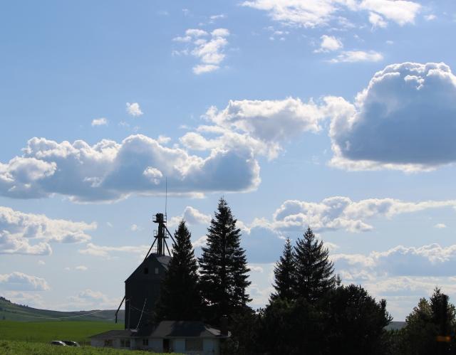 Blue-sky day on The Palouse