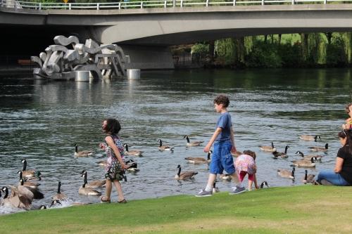 Feeding ducks -- Riverfront Park