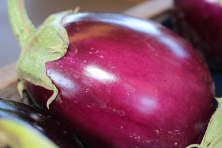 Beautiful eggplant: Decatur Farmers Market