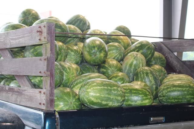 Truckbed of watermelons