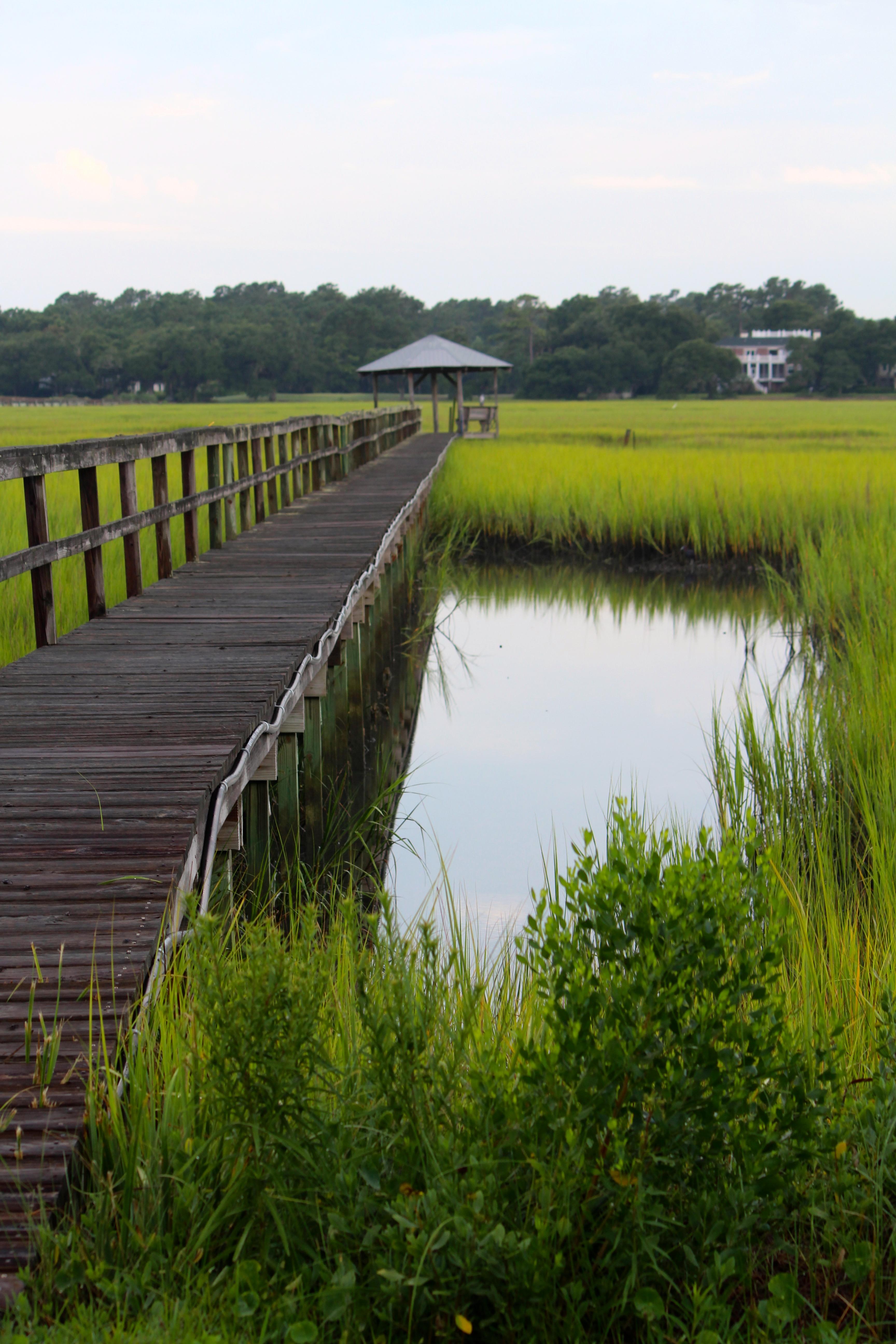 Morning Walk Creekside Pawleys Island South Carolina
