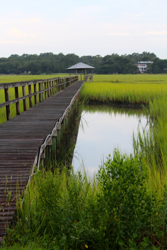Long boardwalk, Pawleys Island