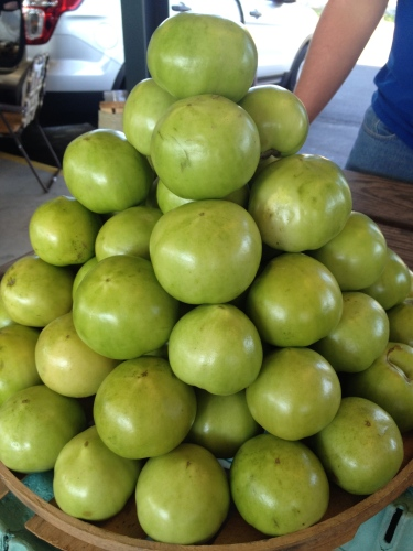 Stack of green tomatoes, Decatur, AL