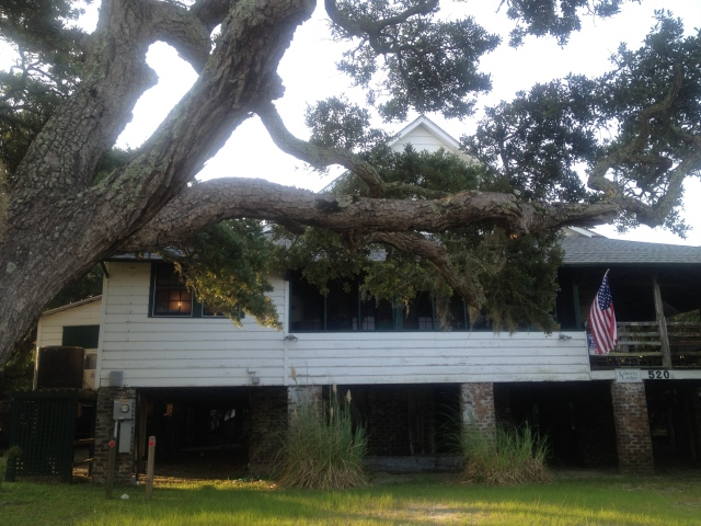 Ward House/Liberty Lodge