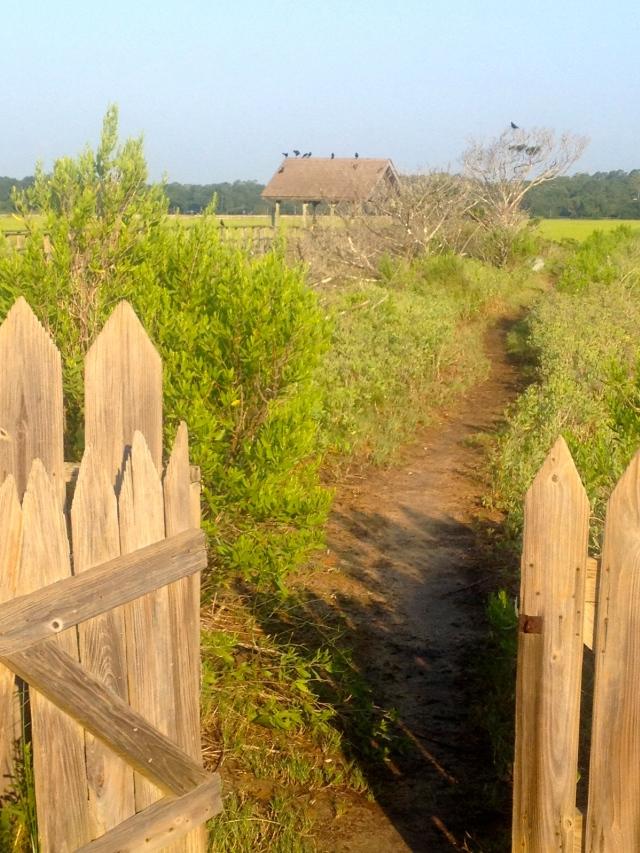 Open gate, creekside, Pawleys Island