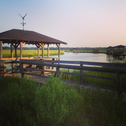 Morning walk creekside: Pawleys Island, South Carolina