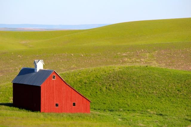 Salt box barn -- The Palouse