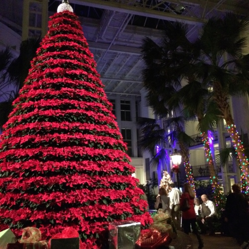 A popular spot for pictures -- the red poinsettia tree in the Garden Conservatory