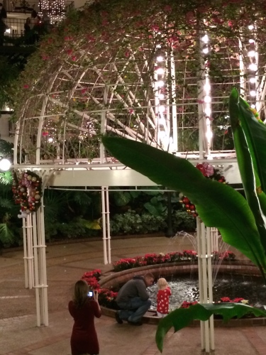 Mom captures her husband and child at the decorated gazebo in the Garden Conservatory