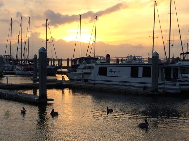 Marina - Amelia Island