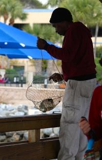 Today's catch: St. Simons Island Pier