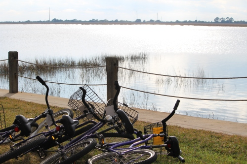 No more cycling
