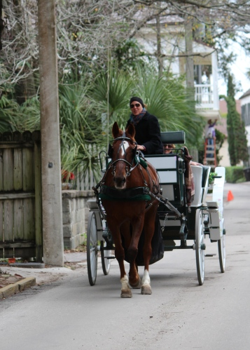 Horse-drawn carriage, St. Augustine, FL
