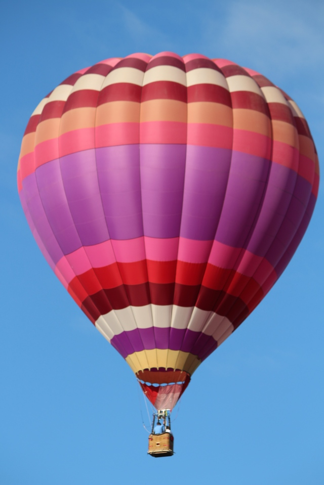 Shades of purple -- Balloon Fiesta 2014