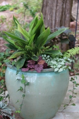 Container of shade-loving plants