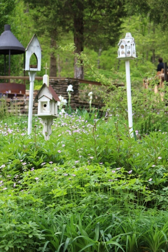 An area of perennials, iris and birdhouses