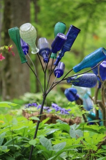 Bottle tree -- Suzie Hall's garden