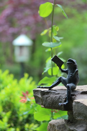 A tiny frog perches on the porch of Dr. Alan Solomon's home with the gardens in the background