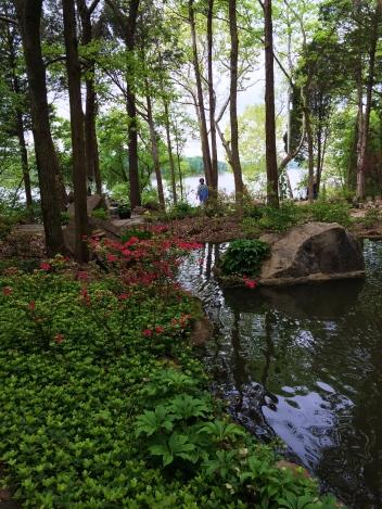 Lovely natural setting facing the lake