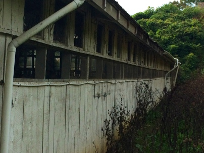 Side View: Poultry Barn, Knoxville, TN