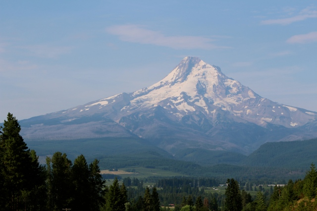 Early morning view of Mt. Hood from an orchard near Troutdale, OR
