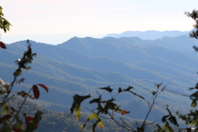 Even without the fall colors, the ridges and valleys are a sight to behold in the afternoon sunlight.