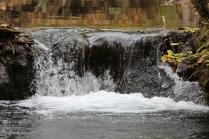 Small waterfalls in surrounding area: Falling Spring Falls