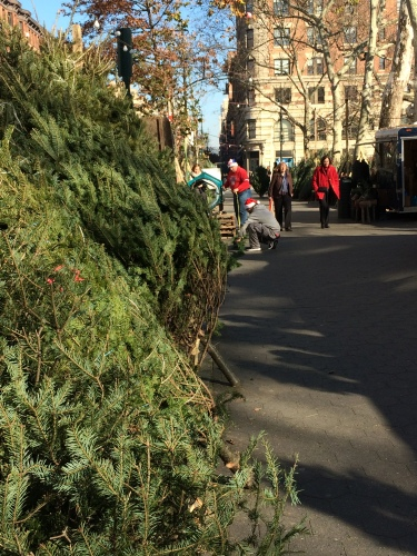 Bundled and leaning on each other, Christmas trees are piled high at a street mark in NYC.