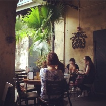 Dining among the palms on the courtyard at Napoleon House.