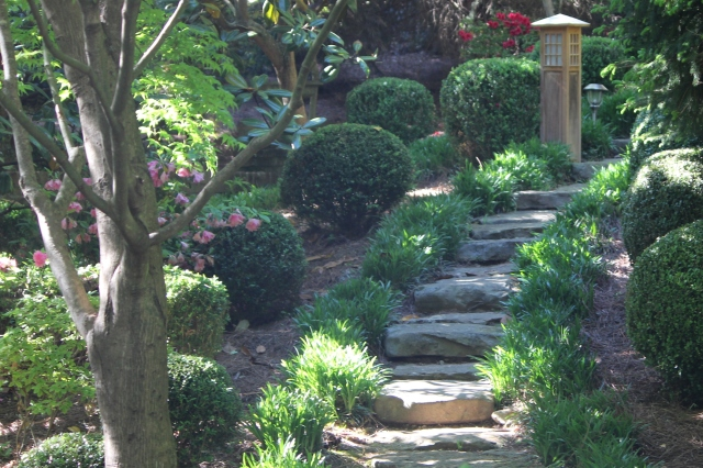 Pathways lined with shrubbery and groundcover
