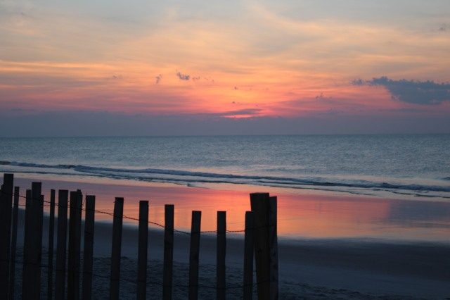 Looking through the fences at the Atlantic Ocean -- just one more glorious morning at Pawleys!